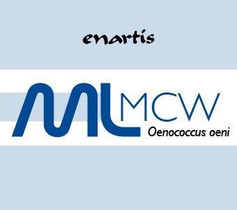 EnartisML MCW - Build-Up