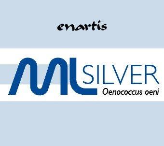 EnartisML Silver