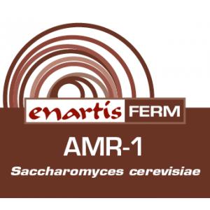 EnartisFerm AMR-1