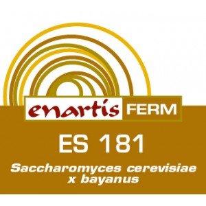 EnartisFerm ES 181