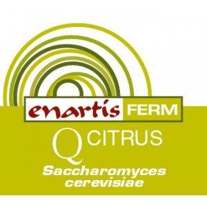 EnartisFerm Q Citrus