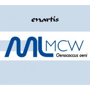 EnartisML MCW - Build-Up