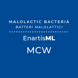 EnartisML MCW Direct Addition