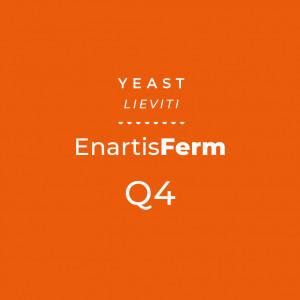 EnartisFerm Q4