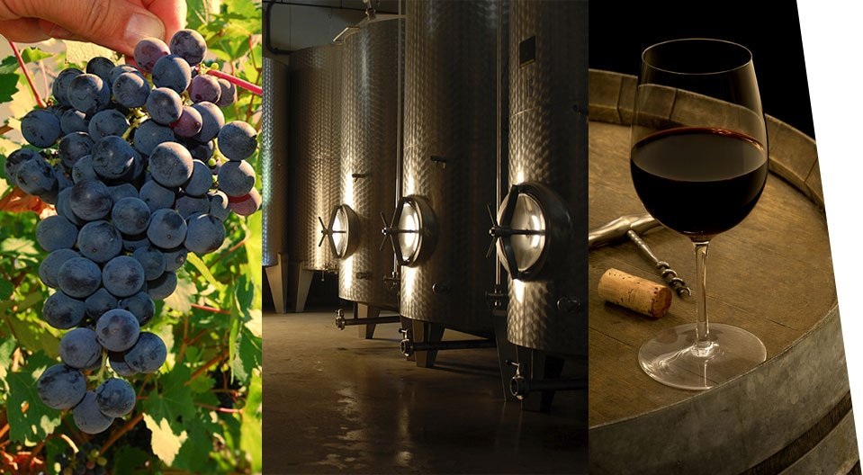 Winemaking Products